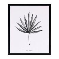 Obraz sømcasa Palm, 25 x 30 cm
