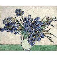 Obraz Vincenta van Gogha - Irises 2, 40x26 cm