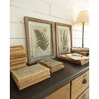 Set 2 obrazov v drevených rámoch Orchidea Milano Boitanique, 33 x 42 cm