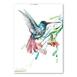 Autorský plagát Humming Bird Flowers od Surena Nersisyana, 42 x 30 cm