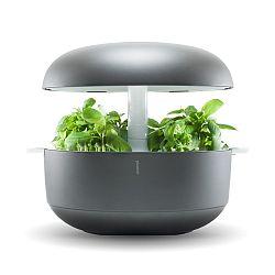 Domáca inteligentná sivá záhradka Plantui 6 Smart Garden Grey