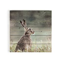Drevený obraz Graham&Brown Hare,50×50cm