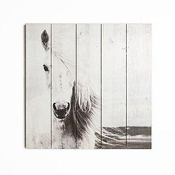 Drevený obraz Graham&Brown Horse,50×50cm
