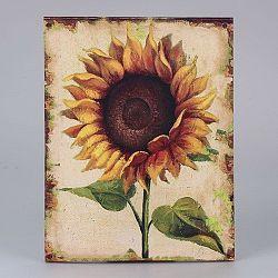 Obraz na plátne Dakls Sunflower