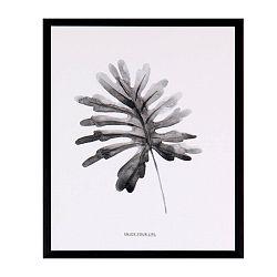 Obraz sømcasa Herbarium, 25 x 30 cm