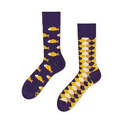 Ponožky Many Mornings Fish and Scales, veľ.35/38