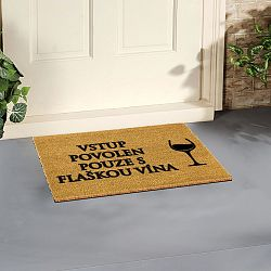 Rohožka Arts Doormats Flaška Vína, 40 x 60cm
