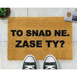 Rohožka Artsy Doormats Zase ty?, 40x60cm
