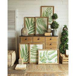 Set 6 obrazov v drevených rámoch Orchidea Milano Botanica Leaves, 65 x 47 cm