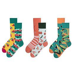 Set ponožiek v darčekovom balení Many Mornings Thailand, veľ. 39–42