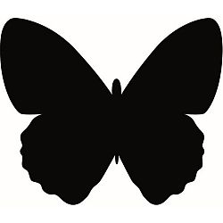 Set popisovacej tabule a kriedovej fixky Securit® Silhouette Butterfly, 36 x 30 cm
