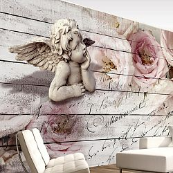 Veľkoformátová tapeta Artgeist Angel And Calm, 300 x 210 cm
