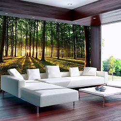 Veľkoformátová tapeta Bimago Morning, 350×245cm